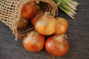 Cebula- zdrowe ostre warzywo